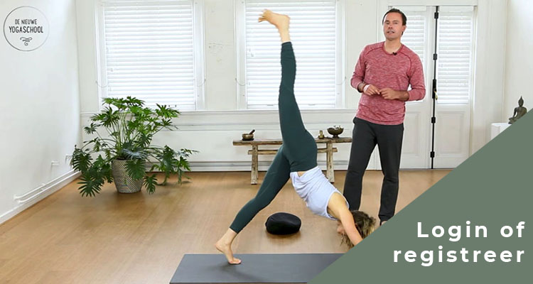 Vinyasa yoga - Johan Noorloos